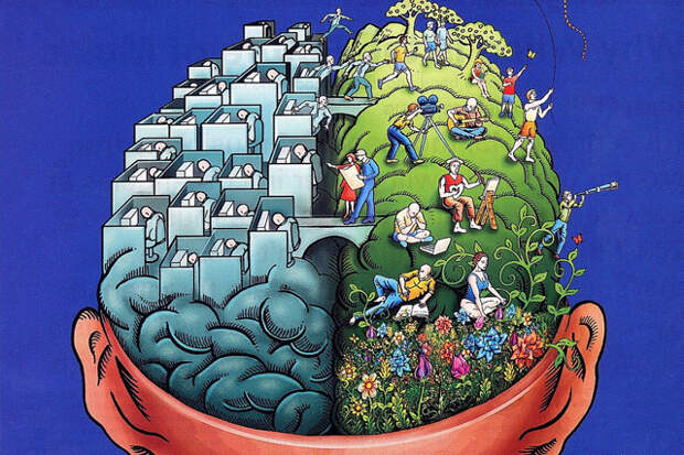 В чем уникальность человеческого мозга?