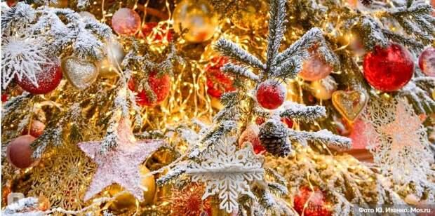 В Москве назван победитель онлайн-конкурса «Лучший Дед Мороз» /Фото: Ю.Иванко mos.ru