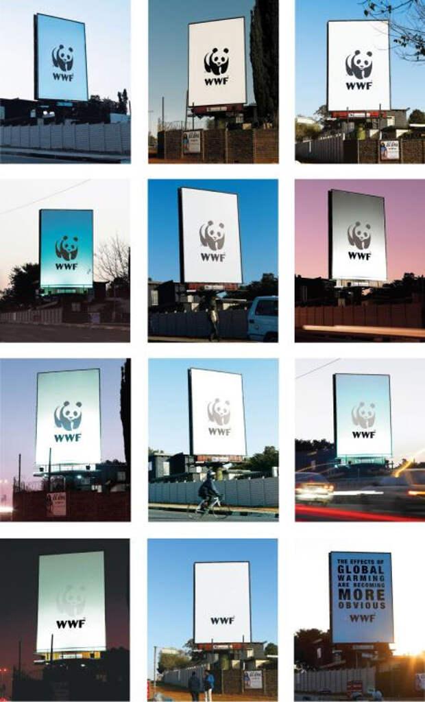 Рисунок панды на логотипе WWF постепенно исчезает, символизируя сокращение численности животных из-за глобального потепления.