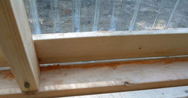 ПАМЯТКА. Защити свой дом от мух и комаров