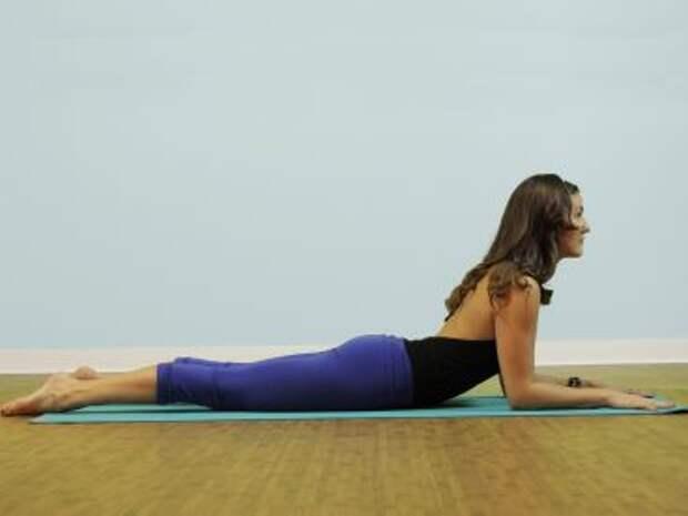 http://yoga-practice.org/wp-content/uploads/2013/10/101-sphinx-pose-salamba-bhujangasana.jpg