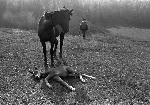 Фотограф Евгений Канаев: «Казань и казанцы в 90-е» 19