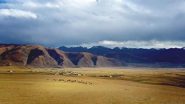 Путешествие в Тибет: яки, дома и священное озеро