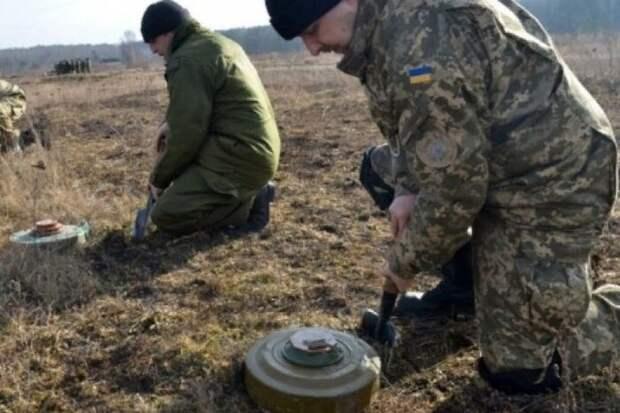 Украинский офицер раскрыл планы ВСУ на случай наступления армии РФ