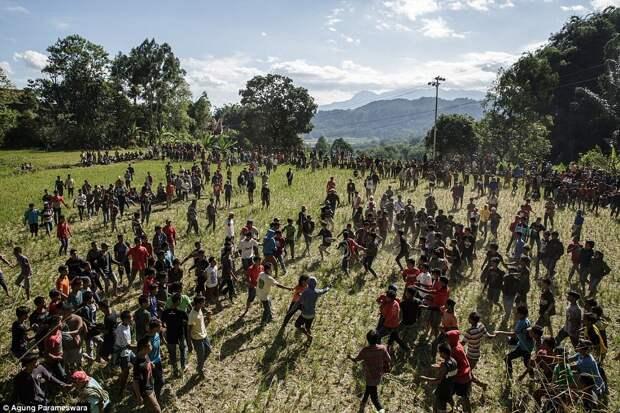 Народ тораджи