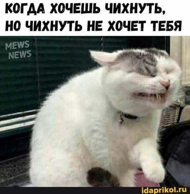 """Из милицейского протокола: """"Гражданин Сидоров был задержан..."""