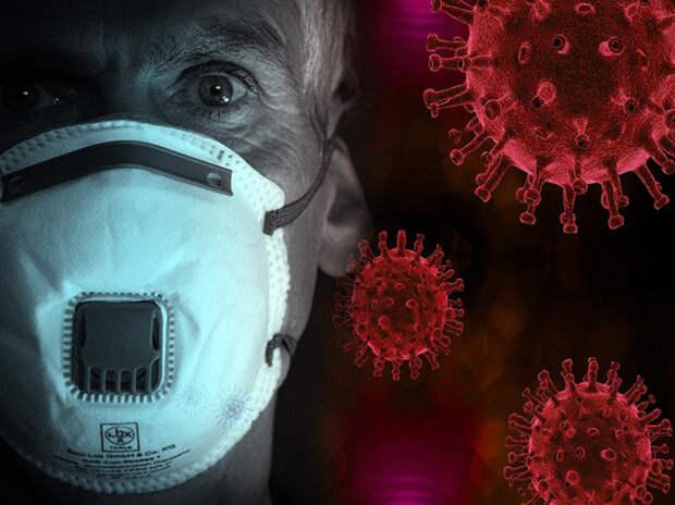 Учёные выяснили неожиданное полезное свойство коронавируса