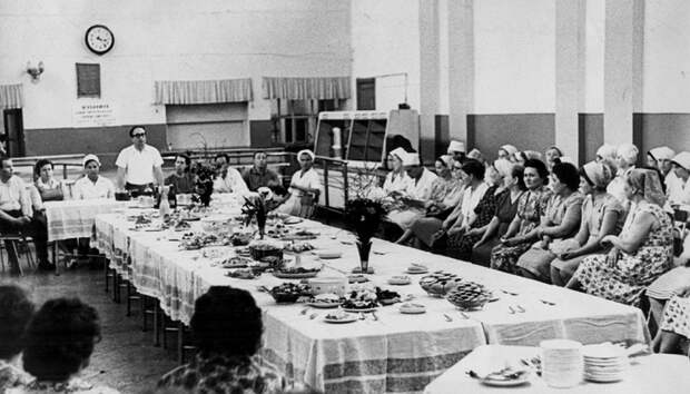 Как академик Несмеянов предлагал накормить советских людей едой из нефти