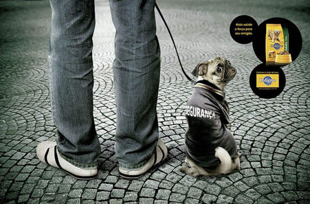 Зверский песик в рекламе Pedigree