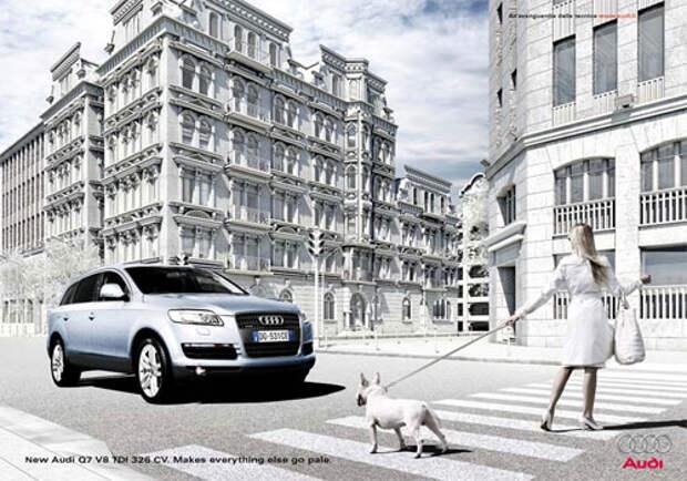 Новый Audi впечатляет женщин и собак