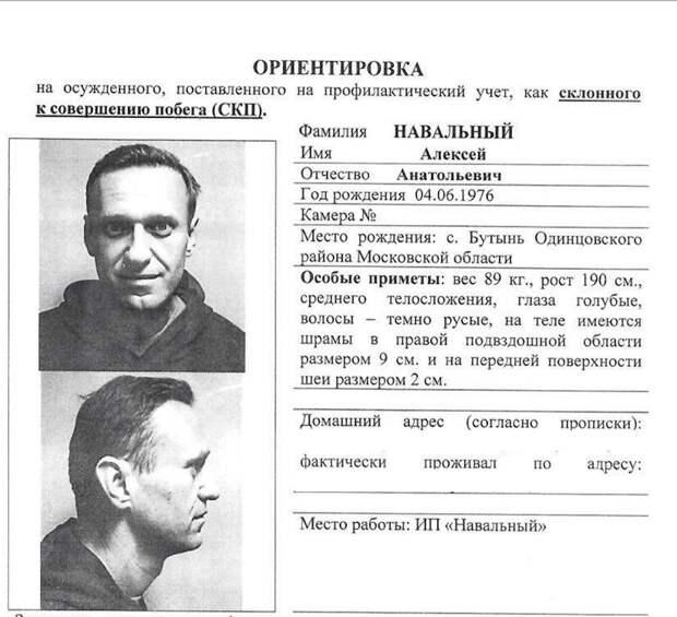 Портрет Навального работы тюремных психологов