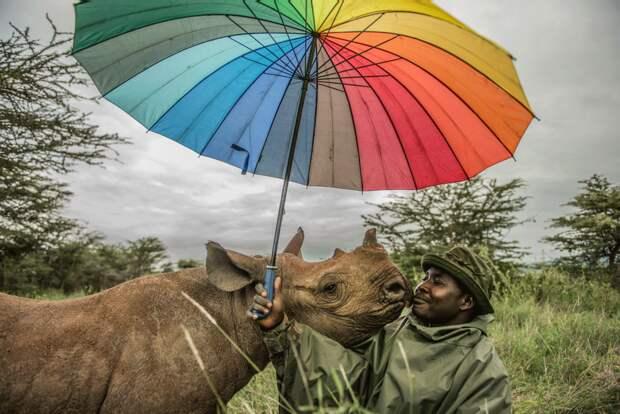 Reteti Elephant Sanctuary, Kenya   Ami Vitale | Missoula, United States