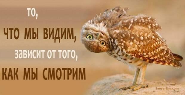 """""""Обиженки, Катя и Володя"""" P.S. Мнение."""