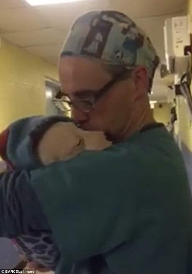 Ветеринар трогательно успокаивает перепуганную собаку после операции