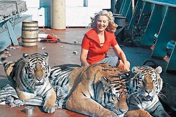 Дрессура и актерский талант. Какие животные были звездами советского кино