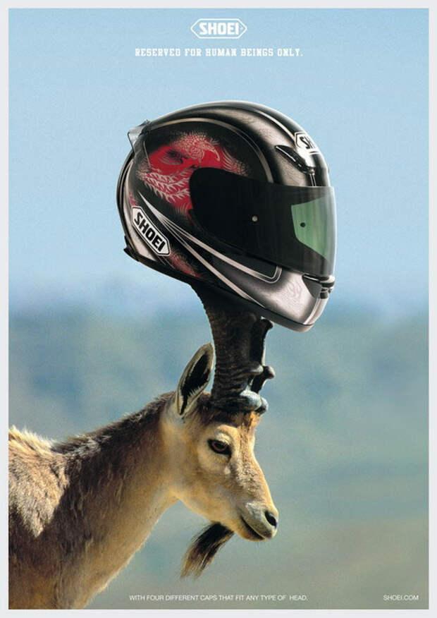 Шлемы Shoei  - не для козлов