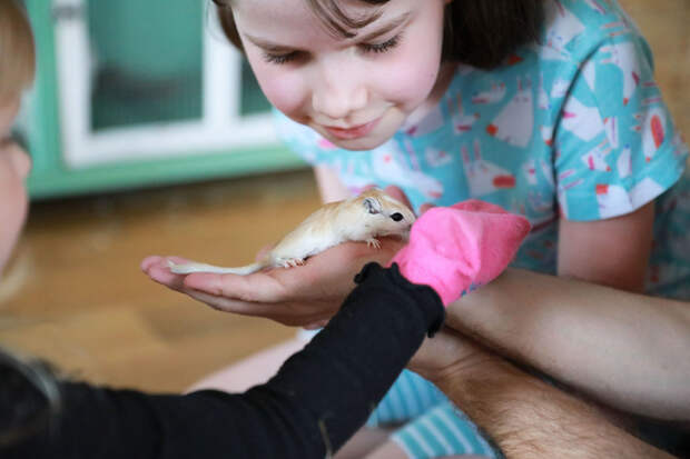 7 супермилых фото животных, которые помогают проходить терапию детям с аутизмом