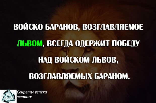 войско баранов возглавляемое львом всегда