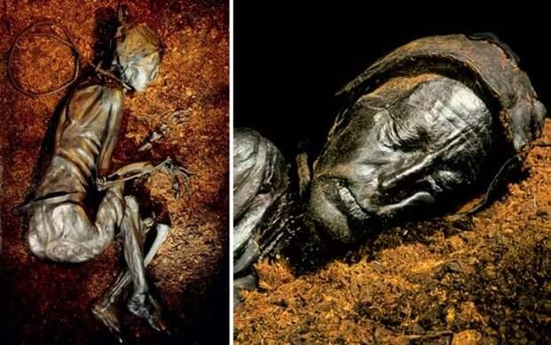 Самая известная из болотных мумий – толлундский человек