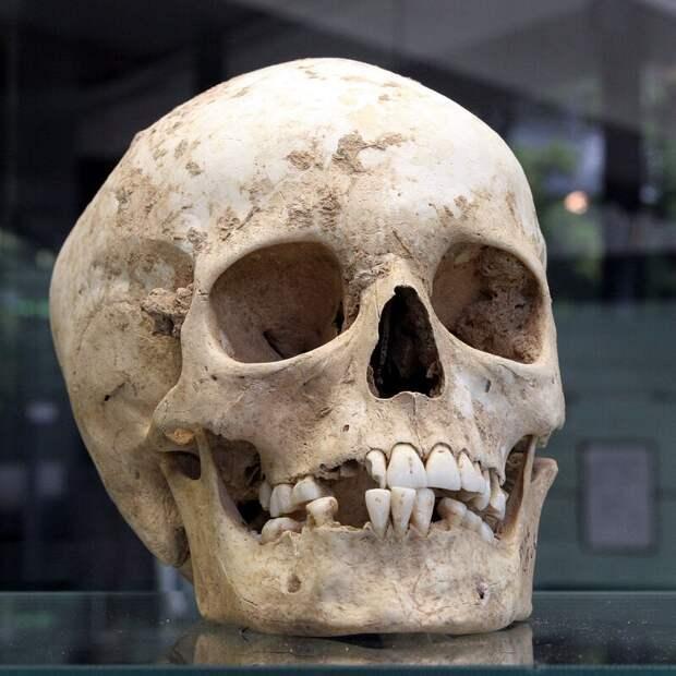 Мрачные тайны прошлого: 10 жутких археологических находок