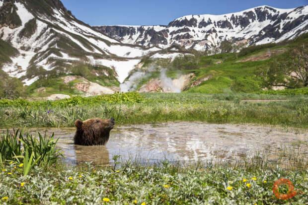 Уникальные фотографии диких уголков страны на фестивале «Первозданная Россия»