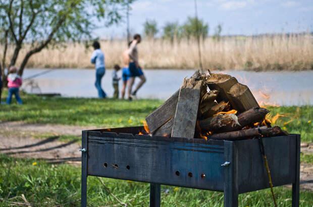 Шашлычный сезон открыт. Что нужно знать о маринаде и мясе?