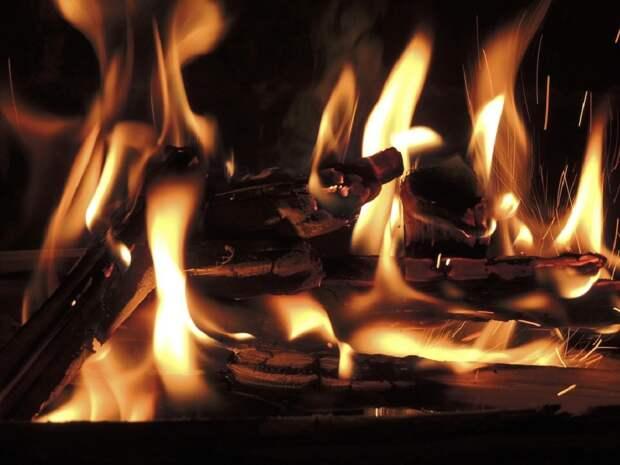 Турецкие СМИ сообщили об ответственности за лесные пожары организации «Дети огня»
