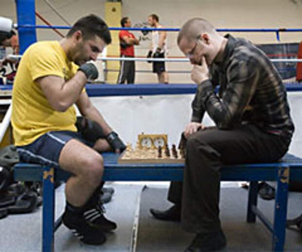 Шахматист, боксер и просто красавец: идея школы гармоничного развития