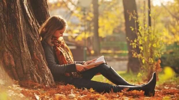девушка читает книгу, сидя под деревом
