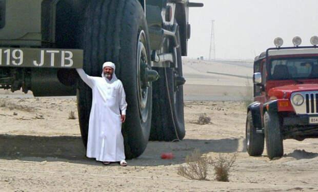 Жизнь арабского шейха