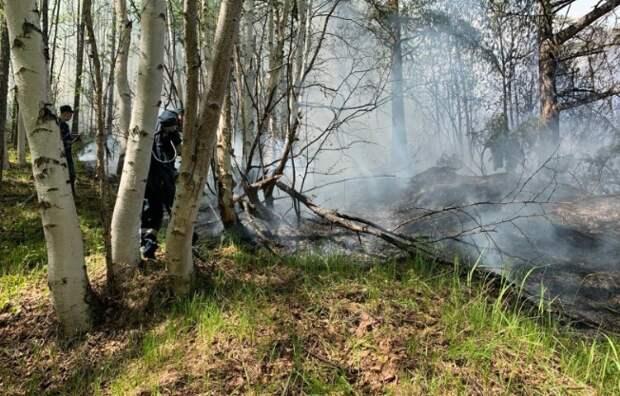 Минприроды предлагает запретить регионам отказываться от тушения пожаров