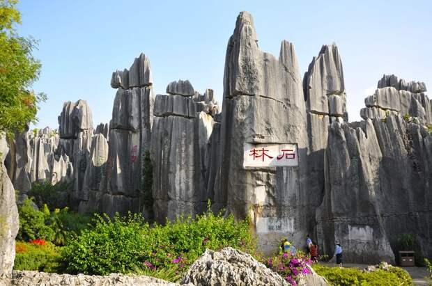 kamenniles 7 Чудеса света: каменный лес Шилинь в Китае