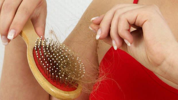 Парикмахер рассказал о связи мытья головы и выпадения волос