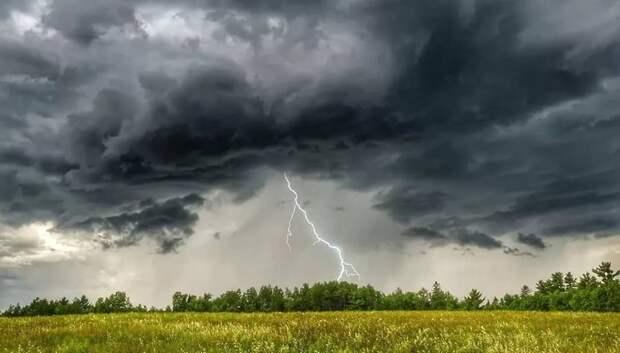 Жара и дожди с грозами ожидаются в Московском регионе на следующей неделе