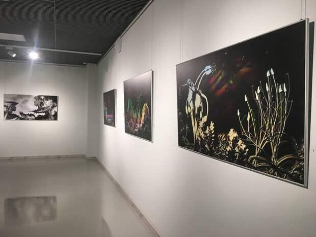 «Евгения Васильева стремительно ворвалась в художественный мир»: в Казани открылась выставка «Иноземье»