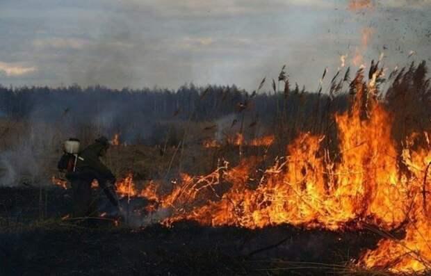 На месте предполагаемого падения ракеты в Эстонии потушен пожар