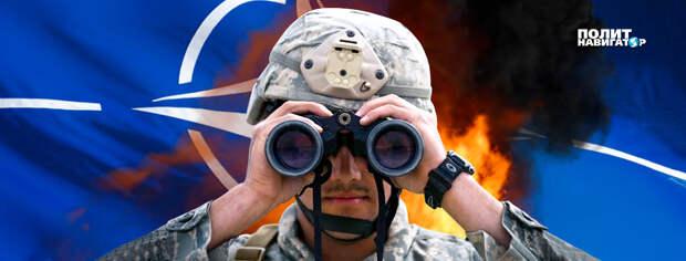 Франция вежливо послала Украину в сторону, далекую от членства в НАТО