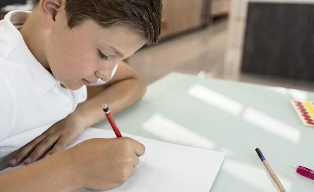 Миссия выполнима: как научить ребенка делать домашнюю работу самостоятельно