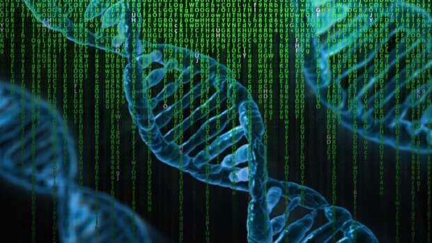 Британские генетики выяснили, как люди могут выживать без важнейшего гена