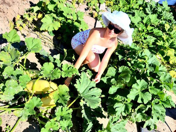 Как я делаю высокоурожайные грядки