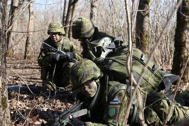 Эстонские офицеры оказались не готовы к морозам на военных сборах