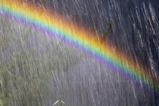 радуга во время дождя