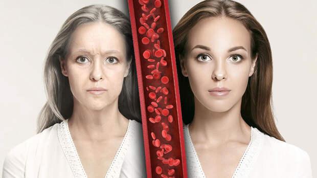 Новый фактор преждевременного старения обнаружили ученые
