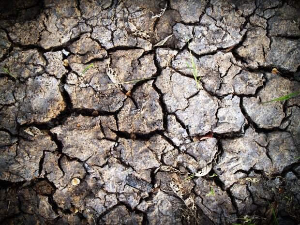 Очередное крымское водохранилище стало «мертвым»