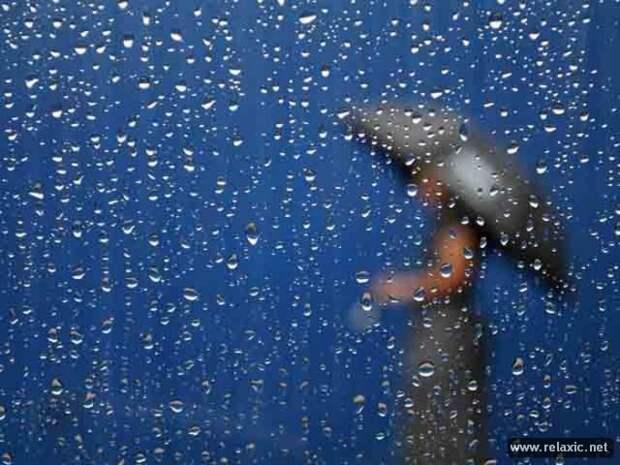 Летний дождь (55 фото)