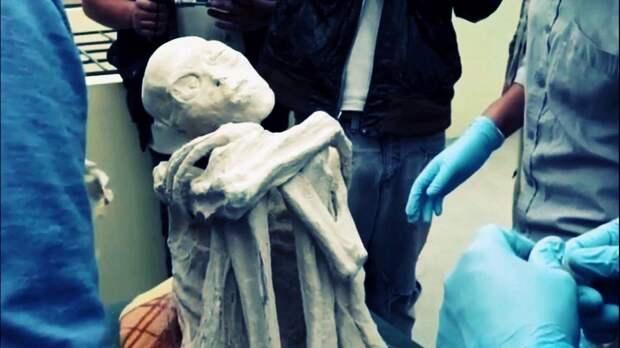 Трехпалая мумия из Перу принадлежит неизвестному науке виду человека
