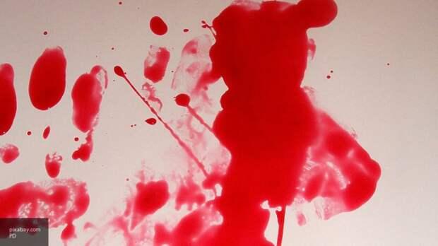 Страшный случай в Ленобласти: на чужом участке нашли окровавленного мертвеца