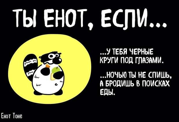 Пара из Петербурга рисует комиксы о ленивом еноте, который чем-то похож на каждого из нас
