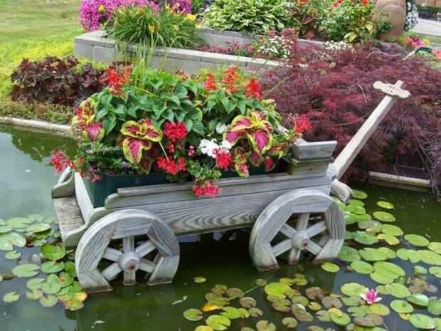 Тележка с цветами в пруду.