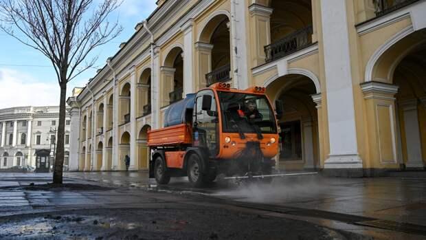 Более 30 деревьев высадят в Петербурге у Гостиного двора